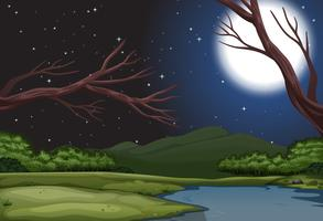 Un paysage de nature la nuit vecteur