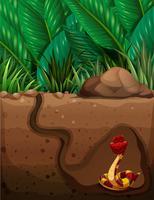 Serpent vivant sous terre