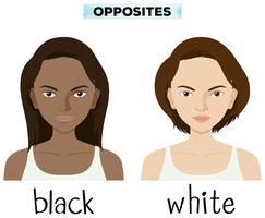 Mots opposés pour noir et blanc