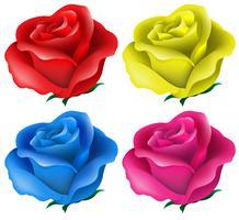 Roses colorées vecteur