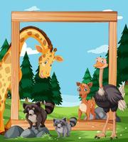 Animal sauvage sur cadre en bois vecteur