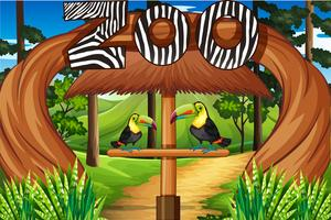 Entrée du zoo avec deux oiseaux toucan vecteur