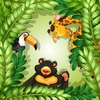 Animaux sauvages sur cadre vert