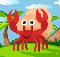 Heureux crabe ermite au pays vecteur