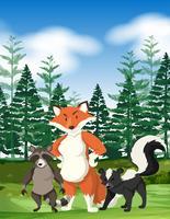 Scène de forêt avec des animaux sauvages vecteur