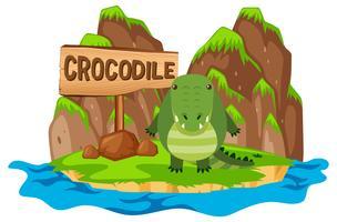 Crocodile sur l'île