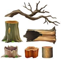 Ensemble de bois d'arbre vecteur