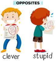 Mots opposés pour intelligent et stupide vecteur