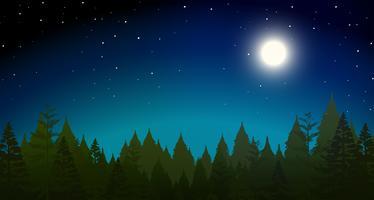 scène de nuit forrest vecteur