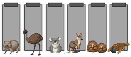 Ensemble d'animaux australie sur bordure grise