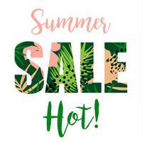 Conception de vente d'été. Modèle de vecteur