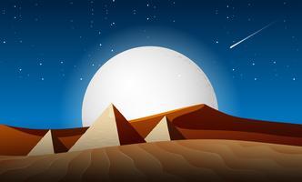 scène de paysage de nuit de désert vecteur
