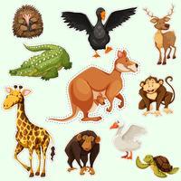 Conception d'autocollant avec des animaux sur vert vecteur