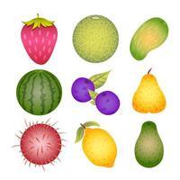 ensemble de modèles d'icônes de fruits vecteur