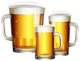 Tailles de verre à bière vecteur