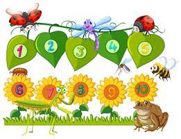 Numéro un à dix sur les feuilles et les fleurs