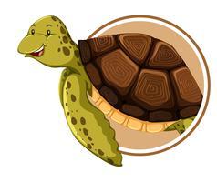 Modèle de tortue sur cercle