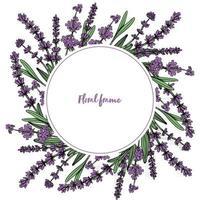 cadre floral rond avec des fleurs de lavande. illustration vectorielle vecteur