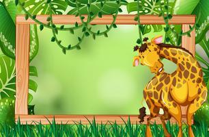 Girafe sur cadre nature verte