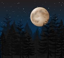 Une nuit sombre en forêt vecteur