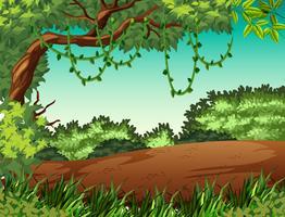 Scène de fond de paysage de jungle vecteur