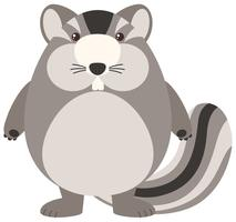 Chipmunk Fat sur fond blanc