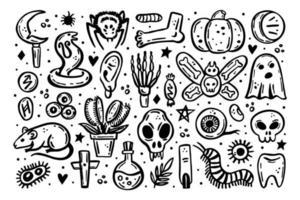 halloween illustration crâne druide couteau insecte fantôme rat poison oeil vecteur
