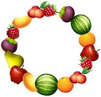 Cadre design avec des fruits frais vecteur