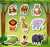 Sticket de nombreux animaux sur fond de jungle vecteur