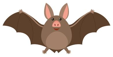 Chauve-souris brune avec visage heureux vecteur