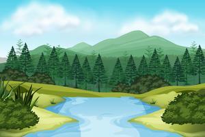 Une vue sur la nature