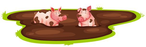 Cochon jouant dans la boue