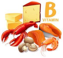 Un ensemble d'aliments à la vitamine B vecteur