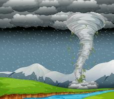 Cyclone dans la nature