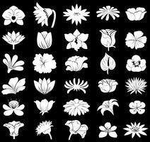 Fleurs vecteur