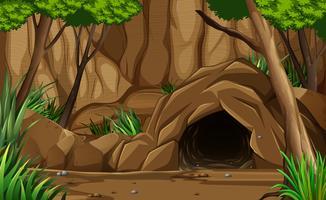 Une caverne rocheuse sombre de l'extérieur