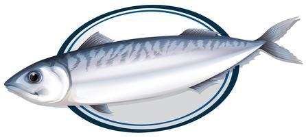 Sardine poisson sur une assiette vecteur