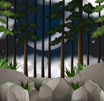 Scène de bois la nuit vecteur