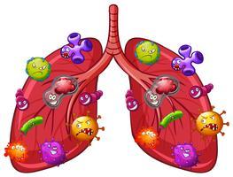 Un vecteur de bactéries pulmonaires