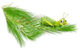 Branche avec une sauterelle heureuse vecteur