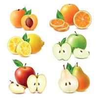 illustration vectorielle de fruits ensemble réaliste vecteur