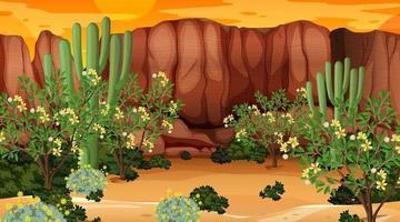 paysage de forêt désertique au coucher du soleil scène avec de nombreux cactus vecteur