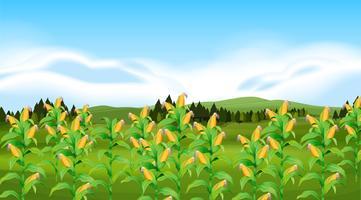 Un paysan ferme de maïs vecteur