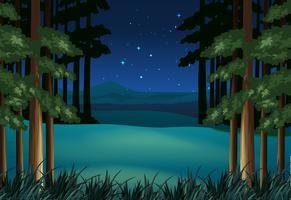 Scène de forêt la nuit avec des étoiles