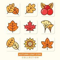 collection d'icônes de feuilles d'automne vecteur