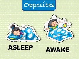 Mots opposés pour dormir et se réveiller