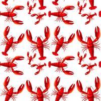 Fond de homard rouge sans joint