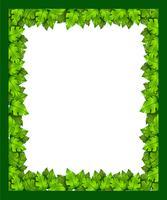 Une bordure de feuilles vecteur