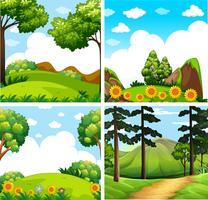 Quatre scènes de fond de forêt vecteur
