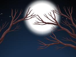 Scène de nuit de pleine lune vecteur